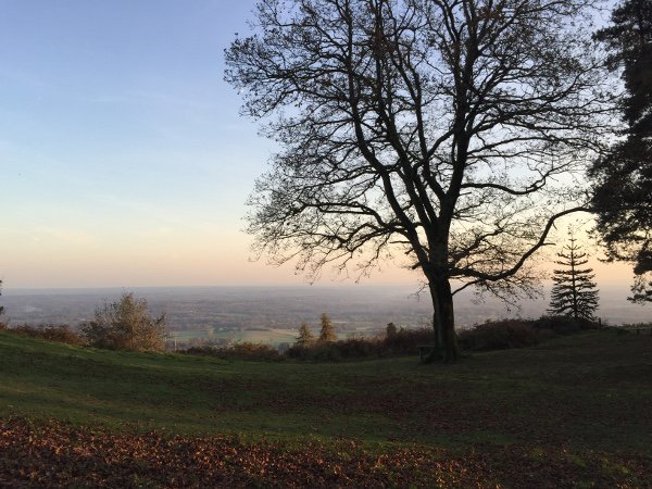 Dusk from Leith Hill 1