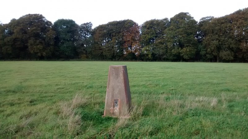 Wendover Woods Trigpoint