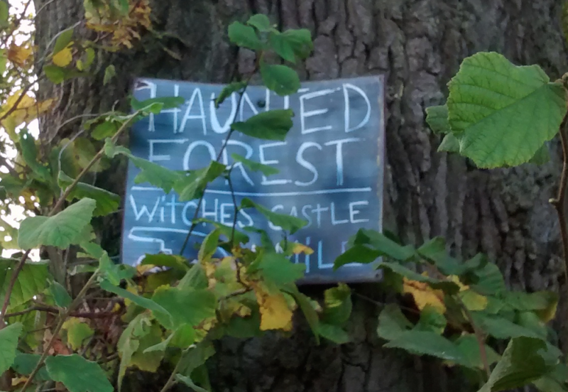 Unexpected Haunted Forest & Witches Castle sign nailed to a tree!