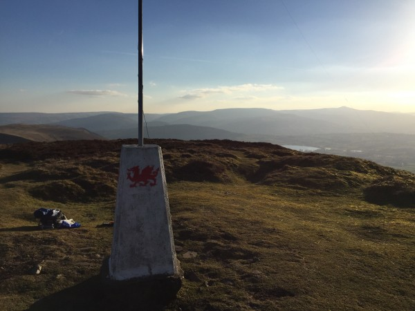 Trig in the fading winter sun