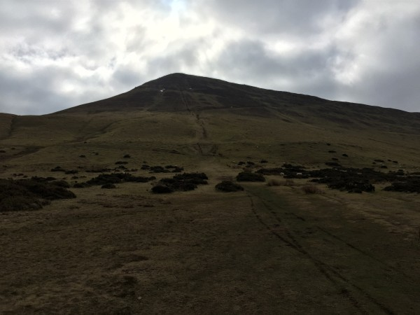 View up to Black Mountain from car park