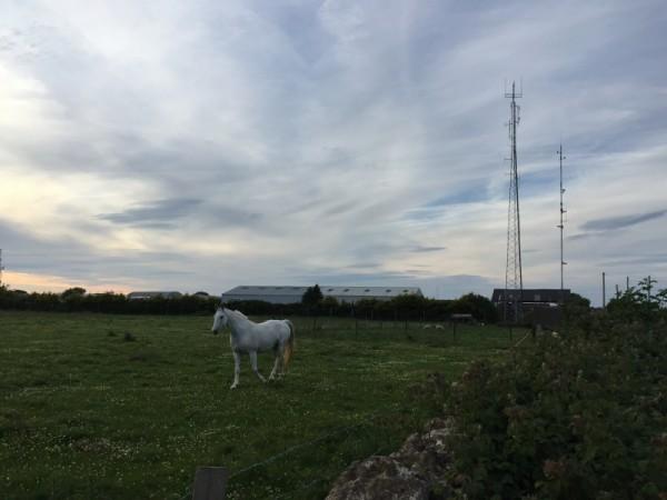 Horse & Transmitter Site near Parking Spot