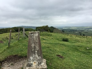 Trigpoint - TP1560 Bradley Knoll